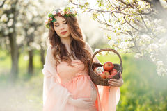 A pregnant woman in a spring garden with basket Royalty Free Stock Photography