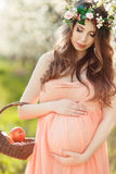 A pregnant woman in a spring garden with basket Royalty Free Stock Image