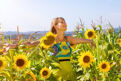 Pregnant woman standing on field sunflowers Stock Photos