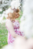 Pregnant woman standing near a flowering tree Royalty Free Stock Photos