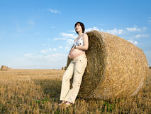 Pregnant woman is staying near bales on the field Stock Image