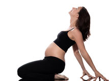 Pregnant Woman Stretching Exercise Royalty Free Stock Photos