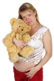 The pregnant woman with a teddy bear Stock Photos