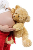 The pregnant woman with a teddy bear Royalty Free Stock Image