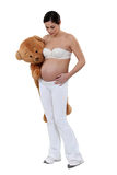 Woman with a teddy bear Stock Photography