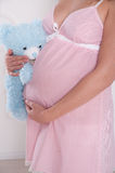 Pregnant woman with teddy expecting a baby Stock Image