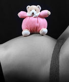 Pregnant woman with toy. Black and white Pregnant woman with pink teddy bear royalty free stock images