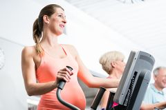 Pregnant woman training on cross trainer at the gym Stock Image