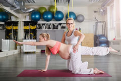 Pregnant woman training yoga secured by personal trainer. Side portrait of pregnant women training yoga secured by personal trainer Stock Image