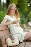 Pregnant woman using mobile phone Royalty Free Stock Photography