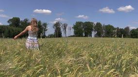 Pregnant woman walk between ripe barley crop ears stock footage