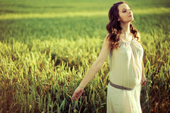 Pregnant woman walking on the corn field Stock Photography