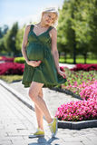 Pregnant woman walking in the park Royalty Free Stock Images