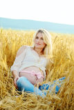 Pregnant woman in wheat field Royalty Free Stock Images