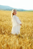 Pregnant woman  in wheat field Royalty Free Stock Image
