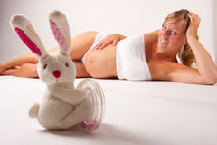 Pregnant Woman With Bunny Stock Photography