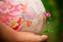 Pregnant women with the beautiful tummy Stock Photography