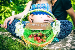 Pregnant women with her husband outdoor in the park with basket Royalty Free Stock Images