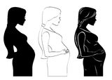 Pregnant Women. An Illustration is a pregnant woman for silhouette, outline, stencil Stock Images
