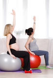 Pregnant women with large gymnastic balls. Two happy pregnant women,brunette and blonde,dressed in sportswear,execute a complex of exercises for pregnant women stock photos