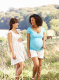 Pregnant women outdoors in countryside. Talking and walking Royalty Free Stock Photo