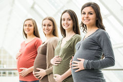 Pregnant women. Side view of four smiling pregnant women are touching their bellies with hands. Maternity concept Stock Images