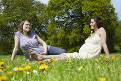 Pregnant Women Sitting On Grass Stock Images