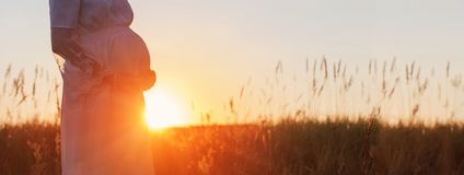 Pregnant women at sunset. The pregnant woman at sunset royalty free stock images