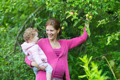 Pregnant young mother and her baby daughter in apple garden Royalty Free Stock Photos