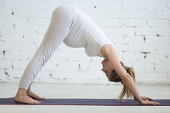 Pregnant young woman doing prenatal downward facing dog pose Royalty Free Stock Photo