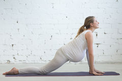 Pregnant young woman doing prenatal Utthan Pristhasana yoga pose Royalty Free Stock Photo