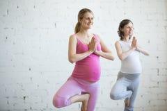 Pregnant young woman doing prenatal yoga. Tree pose Stock Image