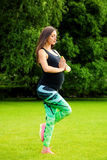 The pregnant young woman Stock Image