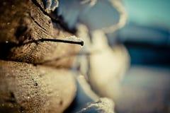 Prego e pilha de madeira coberto de neve Imagens de Stock Royalty Free