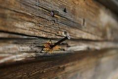 Prego oxidado Fotografia de Stock