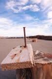 Prego oxidado na placa de madeira idosa Imagem de Stock Royalty Free
