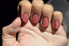 Pregos cor-de-rosa Imagem de Stock Royalty Free