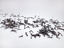 Pregos da sapata, dispersados no papel Foto de Stock