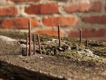 Pregos de projeção oxidados velhos Fotos de Stock Royalty Free