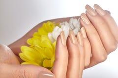 Pregos Manicured com verniz para as unhas natural Tratamento de mãos com nailpolish bege Tratamento de mãos da forma Laca brilhan foto de stock
