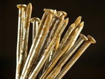 Pregos oxidados Imagem de Stock