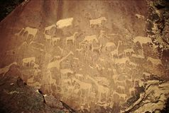 Prehistoric animals graffito. In Kalahari desert, Africa royalty free stock photography