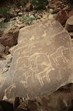 Prehistoric animals graffito. In Kalahari desert, Africa royalty free stock images