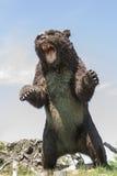 Prehistoric bear. Jurassic park - model of prehistoric wild bear royalty free stock photos
