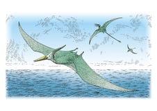Prehistoric birds. Vector illustration of prehistoric birds Royalty Free Stock Photos