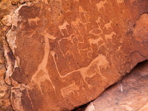 Prehistoric Bushman engravings at Twyfelfontein in Stock Images