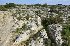 Prehistoric cart ruts in Clapham Junction, Malta. Stock Photography