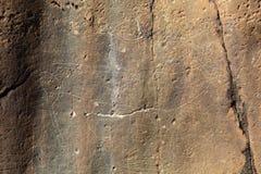 Prehistoric deer petroglyph Stock Photos
