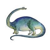 Cartoon dinosaur Diplodocus in watercolor style. Prehistoric dinosaur Diplodocus or brontosaurus was a herbivore sauropod of the Jurassic Period of Earths Stock Photos