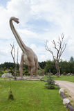 Prehistoric diplodocus. Huge prehistoric diplodocus in full size Stock Photo